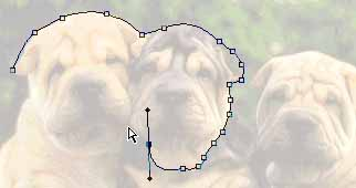 path being created around pups heads